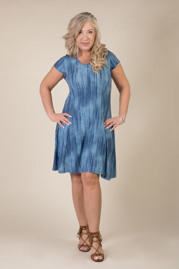 Adeline Shift Dress, Denim, original image number 0