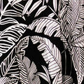 Tropical Destinations Dress, Black, swatch
